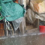 Torrential rain in Asmara - great for crops